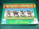 Wood Elf Glade Riders / Waldreiter
