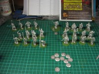 Saga Warband